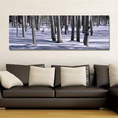 SH00112 (1) Photography Woods in the Snow Print Art