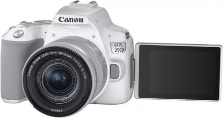 Canon EOS 250D 18-55IS STM (белый)