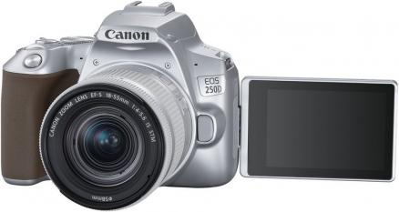 Canon EOS 250D 18-55IS STM (серебристый)